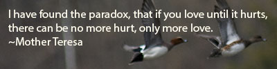 I-have-found-the-paradox-that-if-you-love-until-it-hurts-there-can-be-no-more-hurt-only-more-love