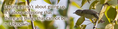 Letting go isn't about giving up. It's about accepting that there are things that cannot be. ~ Unknown