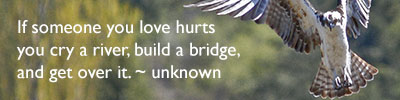 If someone you love hurts you cry a river, build a bridge, and get over it. ~ Unknown