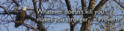 Whatever doesn't kill you makes you stronger.